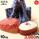 【福袋米】 白米 10kg 【令和元年:滋賀県産】【送料無料】 10kg×1袋でのお届けです♪