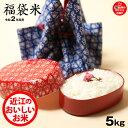 【福袋米】 5kg 【令和2年:滋賀県産】【送料無料】