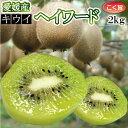 【1月下旬発送】愛媛県産キウイフルーツ2kg (精品)(品種:ヘイワード)
