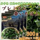 三陸・重茂産 塩蔵わかめ 「プレミアム春いちばん」 100g×3袋