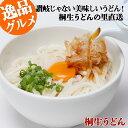 桐生うどん 半生麺 270g×3袋 めんつゆ付お手軽セット あす楽 送料無料 KT-3