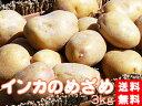 インカのめざめ!3kg(サイズ無選別)【送料無料】北海道産地直送 いんかの目覚め 栗の様な甘いじゃがいも 美味しいジャガイモ※11月上旬頃より収穫出来次第順次発送