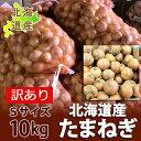 訳あり 玉ねぎ 10kg 送料無料 北海道 たまねぎ/タマネギ/玉葱 10kg(10キロ)Sサイズ 価格 1950 円 新玉ねぎ