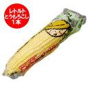 「北海道産」「ピュアホワイト」レトルト トウモロコシ 北海道の白いとうもろこし「ピュアホワイト」レトルト Lサイズを1本から発送 1本 価格 440円