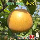【ご予約受付中】 訳あり 完熟 梨 南水 秋月 減農薬 長野県産 10キロ