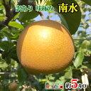 訳あり 完熟 味極み 梨 減農薬 長野県産 5キロ