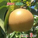 9月上旬発送  訳あり 梨 減農薬 長野県産 3キロ レビューを書いたら200円クーポン