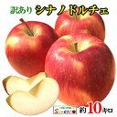 朝どれ シナノドルチェ 訳あり りんご 減農薬 長野県産 10キロ おまけ付き レビューを書いたら200円クーポン