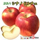 9月上旬発送 シナノドルチェ 訳あり りんご 減農薬 長野県産 5キロ レビューを書いたら200円クーポン