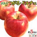 10%OFF 朝どれ 最新りんご シナノドルチェ 訳あり 葉とらず 味極み りんご 減農薬 長野県産 5キロ