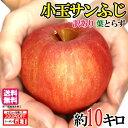 スーパーセール限定10%OFF 小玉 サンふじ 訳あり りんご 減農薬 長野県産 10キロ レビューを書いたら200円クーポン