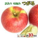 8月下旬〜9月上旬発送 つがる 訳あり りんご 減農薬 長野県産 10キロ レビューを書いたら200円クーポン