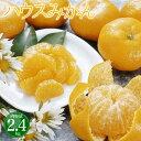 お中元 フルーツ ギフト 送料無料 佐賀県産 ハウスみかん 2.4kg 皮が薄くて甘みたっぷりのハウスみかんです 果物 お中元ギフト 早割