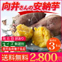 さつまいも 安納芋 種子島産 送料無料 訳あり 無選別 3kg 焼き芋 はもちろん干し芋にも