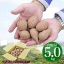 安納芋 種子島産 極小サイズ 送料無料 訳あり・5kg さつまいも 焼き芋 はもちろん干し芋にも