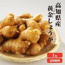【送料無料】高知県産 黄金生姜 1Kg |生姜 国産 黄金しょうが 酢しょうが しょうが 紅茶 ショウガ 生姜 保存 生姜 生姜 効能 根生姜