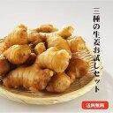 【送料無料】高知県産しょうが お試しセット  生姜 高知 国産 黄金しょうが 大しょうが 三州しょうが お試し