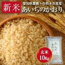 【30年度産・送料無料!(一部地域を除く)】あいちのかおり・10kg ・減農薬玄米 激安!