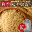 【令和2年度・愛知県豊橋産・送料無料!(一部地域を除く)】あいちのかおり・30kg まとめ買い・減農薬玄米