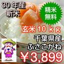 【30年産】千葉県産 ふさこがね玄米10kg(5kg×2)送料無料♪精米無料♪※送料無料地域に除外があります※北海道・九州:+400円