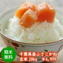 【30年産】千葉県産ふさこがね玄米20kg(10kg×2袋)♪精米無料♪小分け無料♪※送料無料地域に除外があります※北海道・九州:+600円