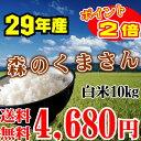 熊本県産 森のくまさん 10kg ( 5kg x 2個 )【送料無料】特A受賞 29年産【あす楽】森のくまさん【お中元】【お歳暮】森のくまさん02P05Nov16