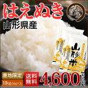 新米☆はえぬき 山形県産 精米 10kg (5kg×2) 平成30年産 本州お届け 送料無料