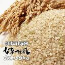3年産【新米】北海道産ななつぼし玄米 30kg 送料無料 精米無料 北海道米