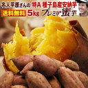 お歳暮 ギフト さつまいも 安納芋 鹿児島 種子島産 生芋 糖度40度 特Aプレミア蜜芋5kg 焼き芋にして冷凍保存OK 送料無料 お誕生日 内祝い