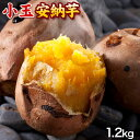 長期熟成 小玉限定 本場種子島産 訳あり 安納芋 1.2kg 小玉 2S〜3Sサイズ限定 【送料無料】 さつまいも 《3-7営業日以内に出荷予定(土日祝日除く)》