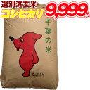 令和2年産 コシヒカリ 玄米 30kg千葉県産 精米(白米)無料【送料無料】