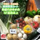 千葉県産 ・ 茨城県産 旬 詰め合わせ 産直 野菜 10品目以上 新鮮 採れたて 野菜セット 送料無料 (一部地域は別途送料がかかります)