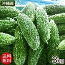 沖縄産 ゴーヤー 約3kg(10〜15本)【送料無料】