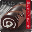 生チョコロールケーキ【バレンタイン】【ギフト】