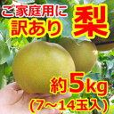 【訳あり】【送料無料】和梨7〜14玉(約5kg)日本一大産地「茨城」より発送!ご家庭用にどうぞ。