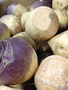ルタバガ【輸入品】1kg  黄カブ 煮たり焼いたりしてお召し上がり頂けます!【20P30May15】