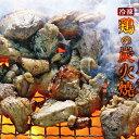 宮崎名物 焼き鳥 鶏の炭火焼100g×6 手仕込み+冷凍でなければ出来なかった焼き立てのお店の味 送料無料