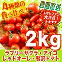 完熟トマト【リコピンで日々の健康を!】まるでフルーツ♪ レッドオーレ・贅沢トマト・アイコ・ラブリーサクラの食べ比べ詰め合わせ♪2kg ミニトマト【農家直送】