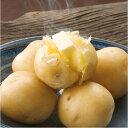 じゃがいも 送料無料 9kg とうや 北海道産 ニセコ産 M-L サイズ混み ジャガイモ 芋 トウヤ 野菜ギフト 野菜 お歳暮 混みとうや