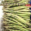 わけありアスパラ送料無料 1kg S-Lサイズ混み 北海道 ニセコ産 低農薬栽培 グリーンアスパラ 朝採り直送 クール便 アスパラガス 冷蔵便 野菜 訳あり野菜 わけあり 訳あり ワケアリ