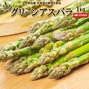 アスパラ送料無料 1kg Lサイズ 北海道 ニセコ産 低農薬栽培 グリーンアスパラ 朝採り直送 クール便 ギフト アスパラガス 冷蔵便 野菜ギフト 野菜