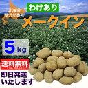 【訳あり】北海道厚沢部町産じゃがいも「メークイン」5kg【送料無料】
