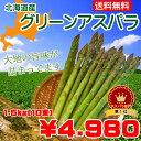 【送料無料】北海道産グリーンアスパラ L〜2Lサイズ1.5kg(150g×10束)