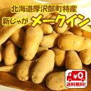 【送料無料】北海道厚沢部町産「新じゃがメークイン」Lサイズ10kg