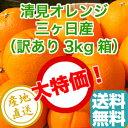 訳あり 清見 オレンジ 家庭用3kg箱 静岡県三ヶ日産 産地直送 送料無料 みかん 柑橘類