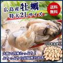 大粒2Lカキ 広島県産 約1kg 加熱用 業務用 メガ盛り カキフライ 鍋  バーベキュー BBQ 送料無料 冷凍便