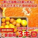 個性豊かな果汁たっぷり♪5種類以上の柑橘が楽しめる店長のきまぐれ春の柑橘福袋3kg【北海道・沖縄・一部離島は別途800円】
