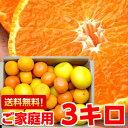 北海道、沖縄・一部離島は発送不可個性豊かな果汁たっぷり♪5種類以上の柑橘が楽しめる店長のきまぐれ春の柑橘福袋3kg