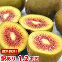 全国でも数箇所しか栽培されていない常識を覆すほど甘〜い♪キウイフルーツ山梨県産 レインボーレッド1.2kg北海道、沖縄・一部離島は発送不可