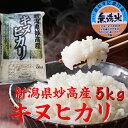 【無洗米】 新潟県 妙高産キヌヒカリ 5kg「29年産 無洗米」 新米